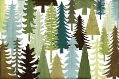 Woodland Trees - Wall Mural & Photo Wallpaper - Photowall
