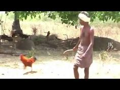Man attacked by Hen || Funny Hen || Angry Birds -  #birds #animals #bird_watchers_daily #animal #birdwatching #pets #nature_seekers #birdlovers Dog Training – The Perfect Pooch System!  Click HERE! Watch Man attacked by Chicken hen || Funny Hen  - #Birds
