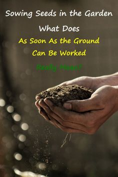 """What does """"as soon as the ground can be worked"""" on seed packets mean? When can you plant seeds in the garden? Garden Soil, Gardening, Vegetable Garden, When To Plant Seeds, Subsistence Agriculture, Garlic Kale, Seed Packaging, Organic Matter, Seed Packets"""