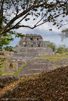 The Maya site of Xunantunich in Cayo District, Belize    Copyright © 2010 Tony Rath Photography All Rights Reserved    This image is not available for use on websites, blogs or other media without the explicit written permission of the photographer. If y