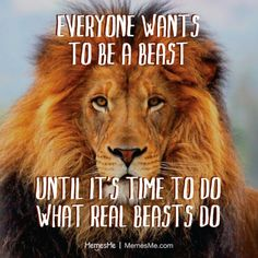 Train like a beast...because you will need to fight like one!