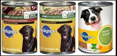 Plastic found in some dog foods-Keep your pets healthy by checking their food before you give it to them!