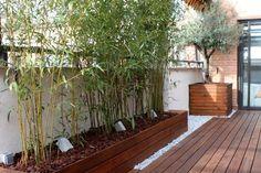 brise-vue bambou -bac-fleurs-bois-terrasse-bois