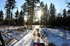 Down the trail!