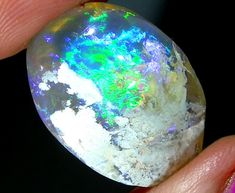 15.15 CTS RARE  CRYSTAL SHELL FOSSIL from lightning ridge opal shells, opalized opal , coober pedy opals, clam shell opalized