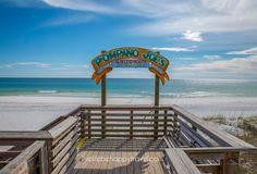 Live Life Be Happy: Activity Guide (Destin) Florida Family Vacation Destinations, Florida Vacation, Florida Travel, Cruise Vacation, Family Vacations, Family Travel, Destin Florida Restaurants, Florida Beaches, Dolphin Encounters