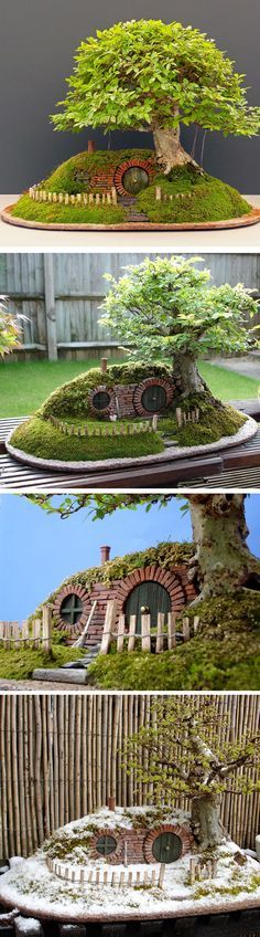 A Hobbit home with bonsai with look so cute in the garden or on the patio. Shoot, I would have it inside my house!