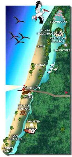 Map of #Celestun, #Yucatan, #Mexico  www.tourbymexico.com