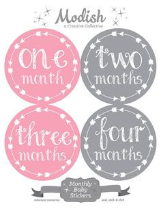 FREE GIFT Arrow Month Stickers Baby Girl Pink Gray por ModishCC