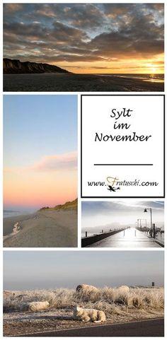 Urlaubstipp: Sylt im November - Eindrücke von der Nordseeinsel im Herbst - #Sylt #Reisetipp #Herbst #Schafe
