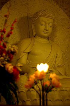Buddha meditating with a glowing lotus flower in His hand Lotus Buddha, Art Buddha, Buddha Zen, Buddha Buddhism, Buddhist Art, Buddha Garden, Buddha Painting, Tantra, Namaste