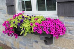 What a beautiful window box!  Need to pin and remember this for next year.  Click through to link and see a total of 20 planter ideas! Flower Pots, Flower Boxes Deck, Railing Flower Boxes, Window Box Flowers, Flower Planters, Potted Flowers, Full Sun Planters, Potted Plants Full Sun, Full Sun Container Plants