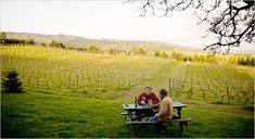 """""""On This Oregon Trail, Pioneers Embrace Organic Wine"""" - story in NYTimes"""