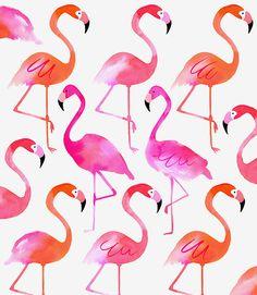 Margaret Berg Art : Illustration : birds / animals / insects