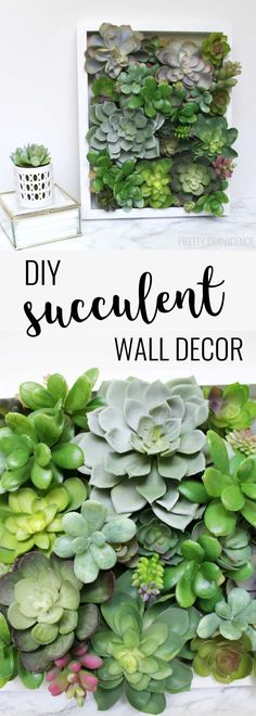 I love decorating with succulents and this easy shadow box decor is my new favorite!