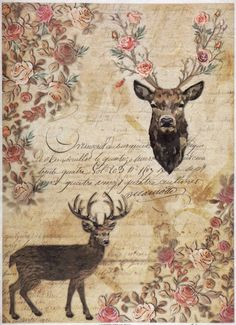 Rice Paper - Stags, Roses and handwritings