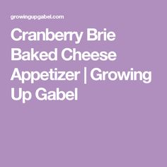Cranberry Brie Baked Cheese Appetizer | Growing Up Gabel