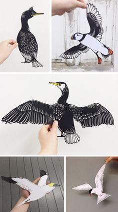 Seabirds Exhibition – North Berwick | Emily Hogarth