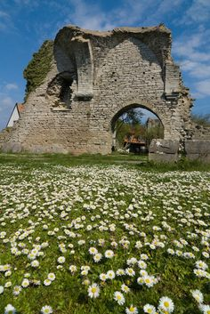 St. Peter's Ruin, Sweden...Gotland County, Visby