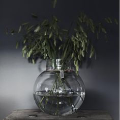 A lovely round glass vase that can be used for both cut flowers and candles. Vases, Vase Centerpieces, Round Glass Vase, Cut Glass, Glass Jars, Art Nouveau, Living Room Themes, Black Vase, Antique Perfume Bottles
