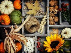 Laden Sie den Herbst zu sich nach Hause ein und basteln Sie schöne thematische Dekoration.Sehen Sie sich unsere wundervollen Herbstdeko Ideen an, die mit...