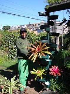 Enriquecendo a biodiversidade do nosso jardim!
