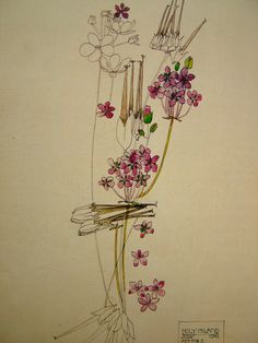 What I learned in art history class today: Scottish architect and designer Charles Rennie Mackintosh did no. Charles Rennie Mackintosh, Botanical Drawings, Botanical Prints, Glasgow School Of Art, Glasgow Girls, Art Graphique, Arts And Crafts Movement, Art And Craft, Art Design