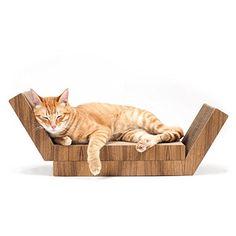 KATRIS Lynks Modular Cat Scratcher - 2 Pack, Real Teak Wo... https://www.amazon.com/dp/B01K0VDMEO/ref=cm_sw_r_pi_dp_x_9-7nybC6T9V9T