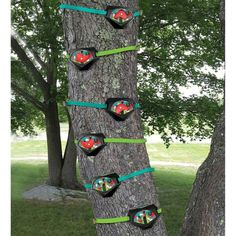 Tree Climbers, Set Of Six (Four Climbing Holds And Two Foot Holds), For Kids' Outdoor Active Play - Hearthsong Kids Climbing, Climbing Holds, Rock Climbing, Backyard Playground, Backyard For Kids, Backyard Zipline, Children Playground, Backyard Ideas, Kids Yard