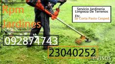 Servicio Jardineria Rpm Jardines  Servicio Jardinería Cortamos Césped PastoLim ..  http://belvedere.evisos.com.uy/servicio-jardineria-rpm-jardines-id-329860