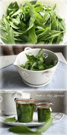 Pesto z medvědího česneku Pesto, Spinach, Gluten Free, Vegetables, Glutenfree, Sin Gluten, Vegetable Recipes, Veggies, Grain Free