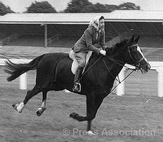 The Queen riding on Ascot racecourse in 1960...in a headscarf....like a boss!