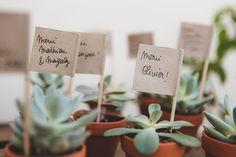 Mini succulentes en cadeau pour les invités #diy