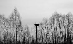 #Latvia #countrysideVisit the post for more.#snow #blackandwhite #AngelaRuzinska #photography