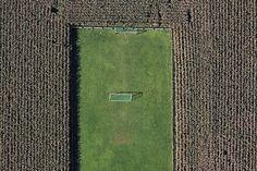 soccer in cornfield