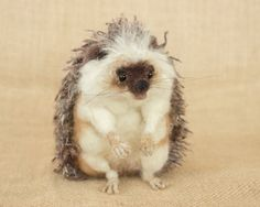 Stanely the Hedgehog Needle felted animal by TheWoolenWagon