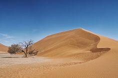 Landschaft Düne 45