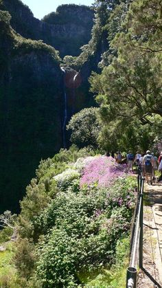 Levada walkings in Madeira Island, Portugal Funchal, Places Worth Visiting, Places To Visit, Visit Portugal, Portugal Travel, Easy Jet, Sea Activities, Evergreen Forest, Natural Park