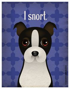 "Boston Terrier....boy, do they ever!! I'd love to rename ours ""Snorticus""!"