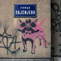 Beogradski grafiti.: Pajsijeva / TKV #Beograd #Belgrade #Graffiti #Grafiti #StreetArt