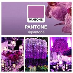 Radiant Orchid Pantone color of 2014