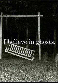 Books: The Paranormal Journal! Ghost And Ghouls, Ghost Pictures, Real Ghosts, Ghost Adventures, Ghost Hunters, Haunted Places, Spooky Places, Haunted Houses, Cryptozoology