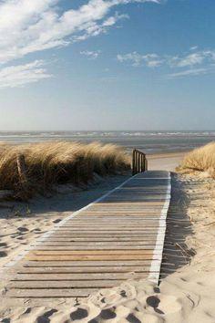 Who doesn't love the beach? All beaches and things at the beach here! The Ocean, Ocean Beach, Beach Grass, Beach Walk, Sand Beach, Ocean Gif, Beach Room, I Love The Beach, Photos Voyages