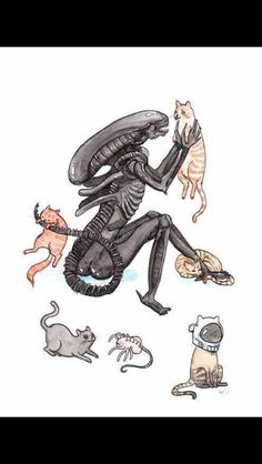 Xenomorph Myths Thinking about getting a xenomorph for a pet but hesitant because of certain myths perpetuated by Hollywood filmakers? Well as a caretaker for a pet xenomorph I'm here to dispel those. Alien Vs Predator, Xenomorph, Horror Villains, Horror Movies, Arte Alien, Alien Art, Aliens Movie, Aliens Funny, Horror Icons