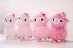 Lovely girl kids alpacasso