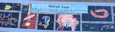 Abyssal Zone.  Last But NOT LEAST of the Ocean Zones.  Matthys Elementary in Pasadena ISD.  Eco-Art Residency Program By Artist Boat.
