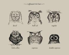 Caffeinated Owls by Dave Mottram