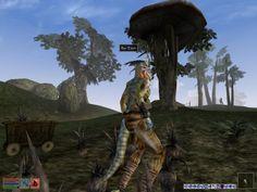 Gefunden in: The Elder Scrolls III - Morrowind -  Au-Tsch ist schon ein passender Name für einen Sklaven auf der  Dres-Plantage.