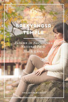 Baekyangsa Temple Naejangsan National Park South Korea