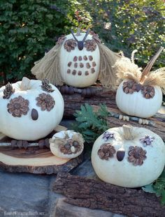 These No-Carve Pumpkin Owls are a hoot to make using natural materials. Best of all, since they're no-carve, they'll last and can be enjoyed throughout fa…
